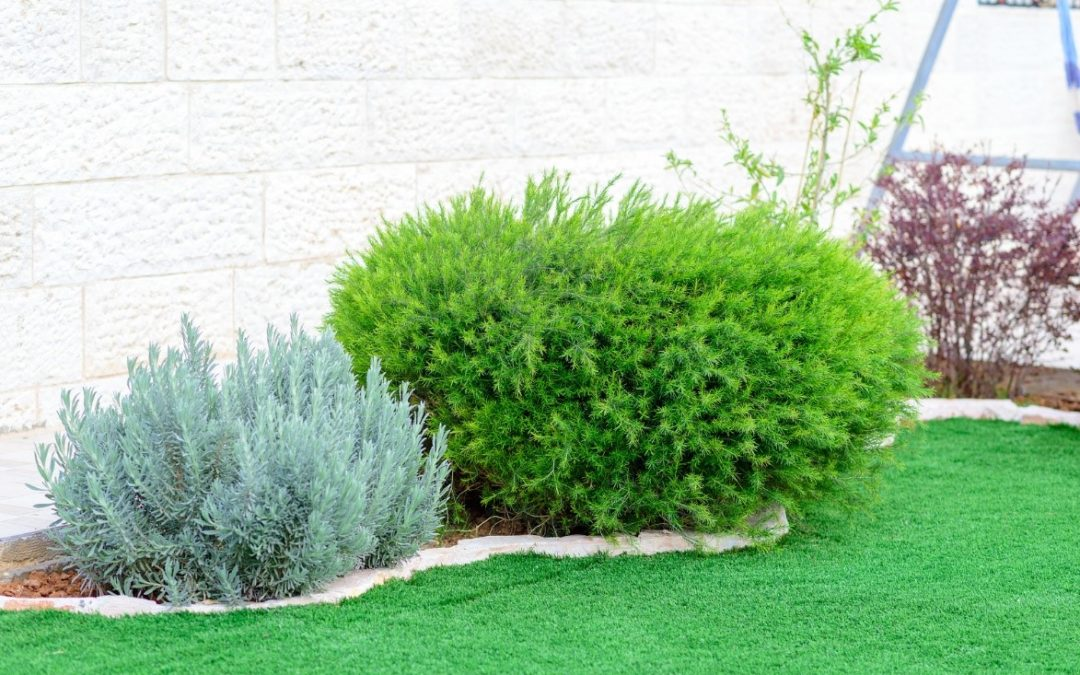 4 Sure Signs You Should Invest in the Best Synthetic Grass in Modesto, CA