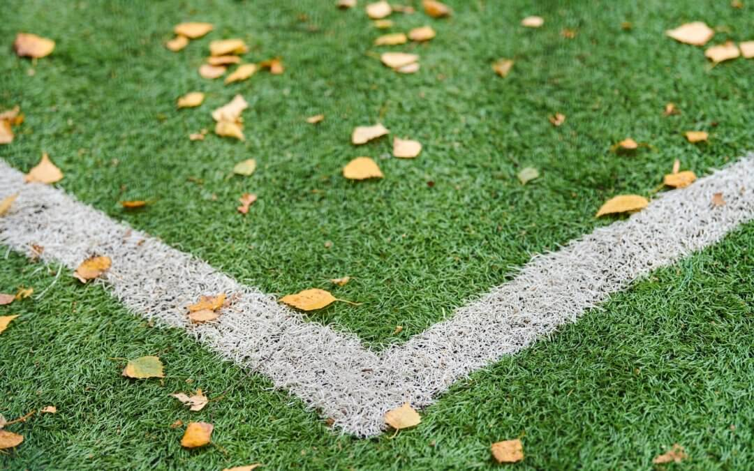 saved artificial grass with leaves